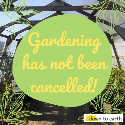 Gardening Has Not Been Cancelled